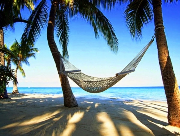 africa-hammock-luxury-palm-trees-Favim.com-516831.jpg